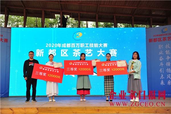 图片13  颁奖嘉宾为三等奖获奖选手颁奖.JPG