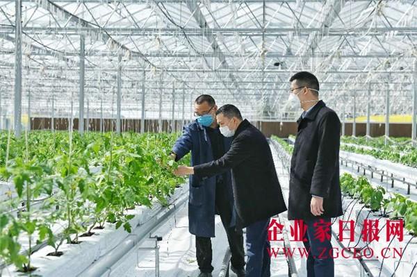 6、四川农信广汉农商银行积极支持农业企业恢复春耕生产.jpg